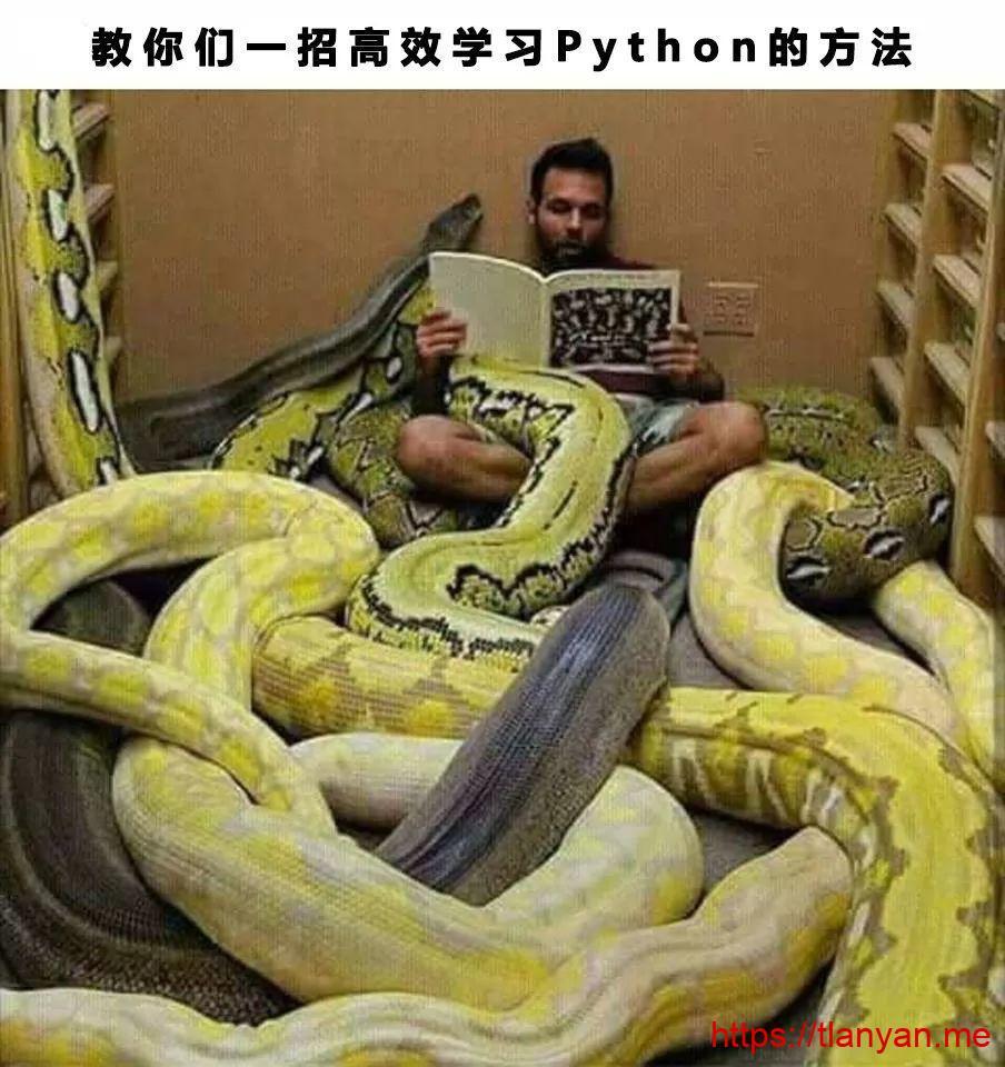 高效学习python的方法